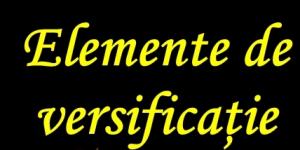 10.Elementele de versificație sunt: