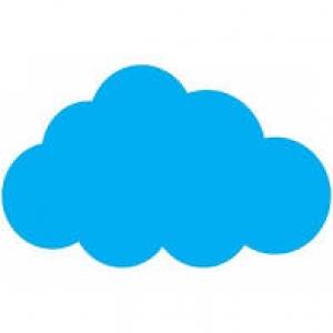 14.Norii sunt alcătuiţi din: